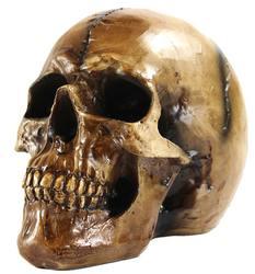 Scary Halloween Human Skull Statue