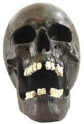 Creepy Halloween Human Skull Sculpture with Mouth Open, Black